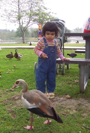 lily_with_goose3_8.jpg